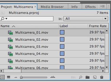 multicam1